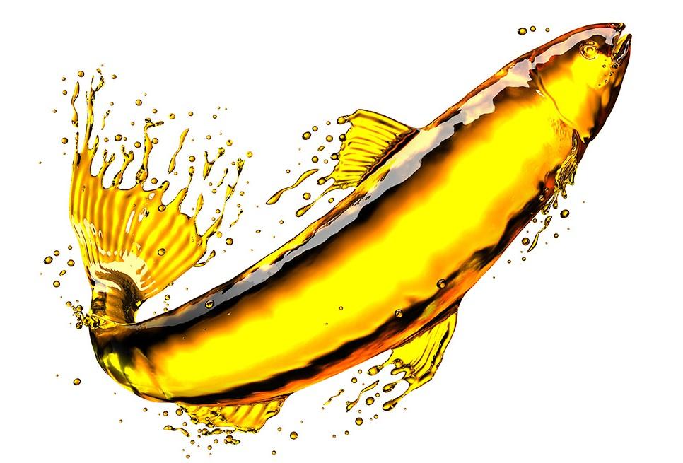 Oil Fish